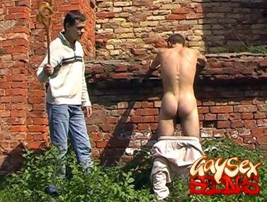 Discipline tails scene 2 1